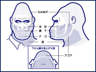 ゴリラクリニックのヒゲ脱毛部位の説明図